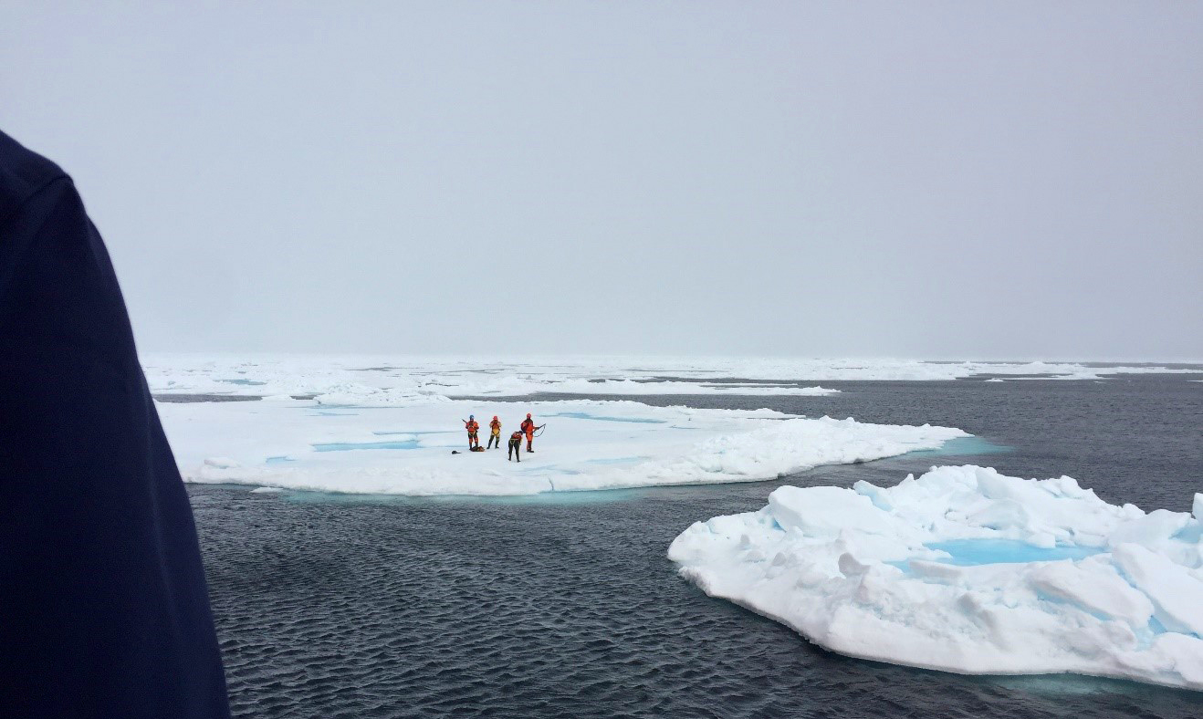 Scientists on the ice - Sentinel North international phd school
